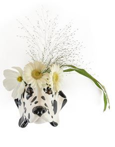 Delightful Spotty Dog Wall Sconce